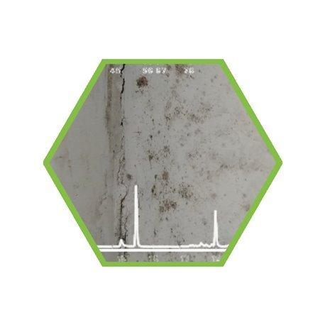 Analysis of mold indoor
