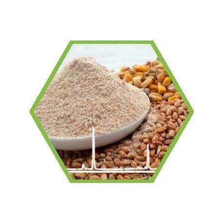 Lebensmittel: Ethylenoxid und 2-Chlorethanol