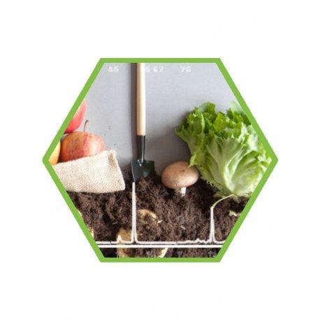 PAH (EPA) in soil