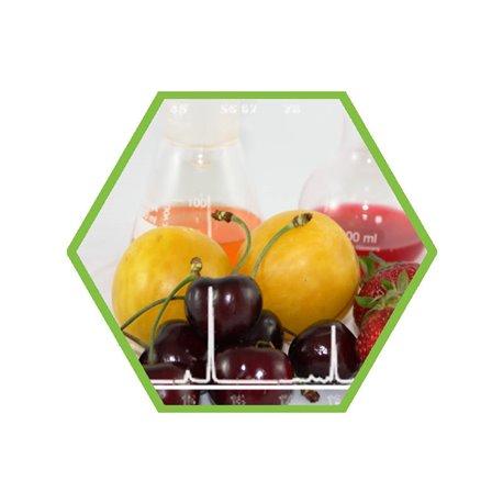 Vitamin B2 in Lebensmitteln