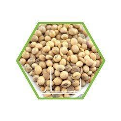 GVO-Soja Direktquantifizierung in Lebensmitteln und Futtermitteln