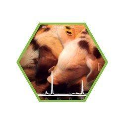 Leitungswasser und Brunnewasser: Tierarzneimittelwirkstoffe