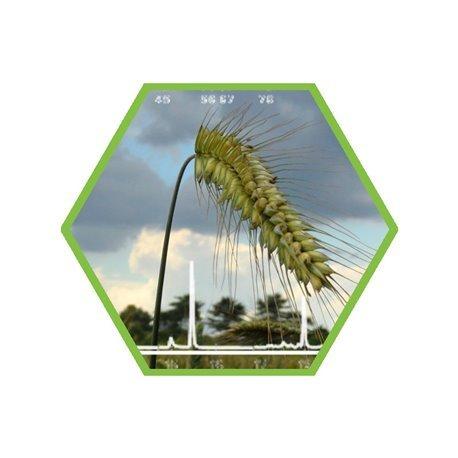 Chlomequat/Mepiquat (growth regulator) in food and feed
