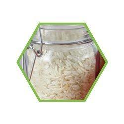 Mikrobiologie: Bacillus cereus in Lebensmitteln