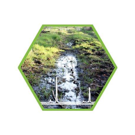 Brunnenwasser/Wasser: Glyphosat/ AMPA