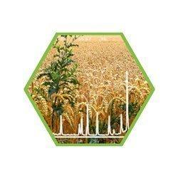 Pestizidscreening in Getreide/Leguminosen