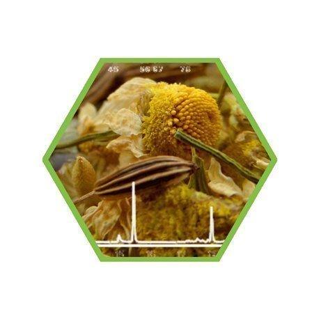 Pyrrolizidinalkaloide teeähnlichen Erzeugnissen (Kräuter)