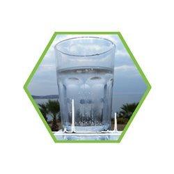 Microcystinen in Lebensmittel oder Wasser