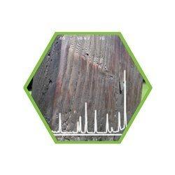 Phosphorflammschutzmittel in Holz / Liegestaub