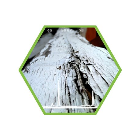 wood protection agens (old and new) in wood or dust