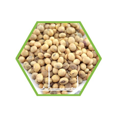 GMO-Soy direct quantification in food and feed