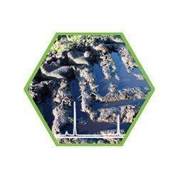 Glyphosat/ AMPA/ Glufosinat in Boden