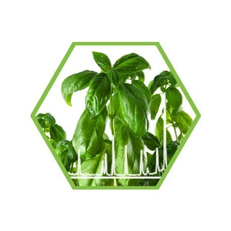 Dioxins in plant material (food)