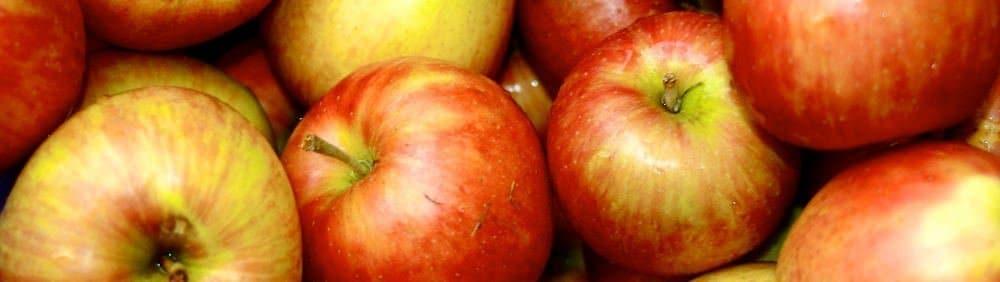 Apfel Informationen